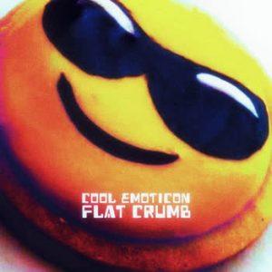 Flat Crumb - Cool Emoticon