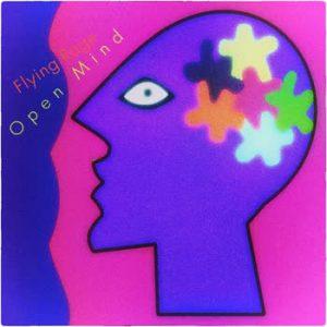 Flying Rage - Open Mind