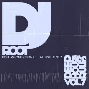 Various Artists - DJ Root - DeepHouse Rules