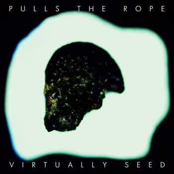 Virtually Seed - Pulls The Rope